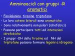amminoacidi con gruppi r aromatici