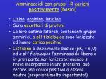 amminoacidi con gruppi r carichi positivamente basici