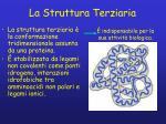 la struttura terziaria