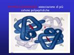 struttura quaternaria associazione di pi catene polipeptidiche