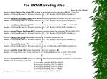 the mxn marketing plan