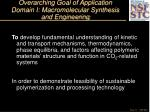 overarching goal of application domain i macromolecular synthesis and engineering11