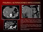 figura 6 alteraciones infecciosas