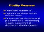 fidelity measures
