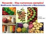 recuerde hay numerosos ejemplos modificaci n gen tica via selecci n y mejoramiento