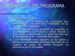 desarrollo del programa19