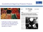 counterfeit and illegal crop protection products22