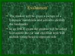 evaluation26