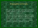 examples of goals