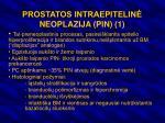 prostatos intraepitelin neoplazija pin 1