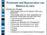 wachstum und regeneration von bl ttern in vitro