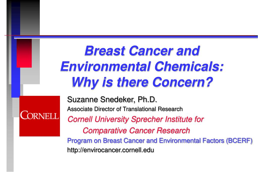 breast cancer and environmental chemicals why is there concern l.