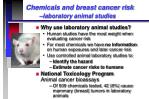 chemicals and breast cancer risk laboratory animal studies