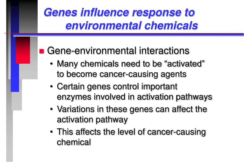 Genes influence response to 			environmental chemicals