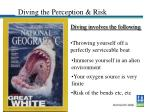 diving the perception risk