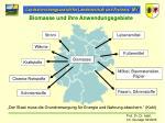 biomasse und ihre anwendungsgebiete