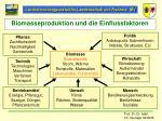 biomasseproduktion und die einflussfaktoren