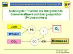 nutzung der pflanzen als energetisches sonnenkraftwert und energiespeicher photosynthese