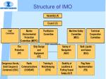 structure of imo