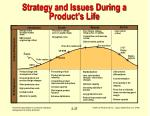 strategy and issues during a product s life