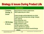 strategy issues during product life