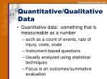 quantitative qualitative data