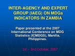 inter agency and expert group iaeg on mdgs indicators in zambia