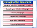 managing the salesforce