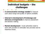 individual budgets the challenges