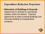 expenditure reduction projections27