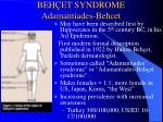 beh et syndrome adamantiades behcet