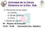 actividad de la c lula din mica en la esc sab36