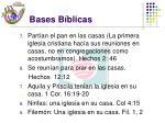 bases b blicas6