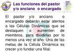 las funciones del pastor y o anciano o encargado