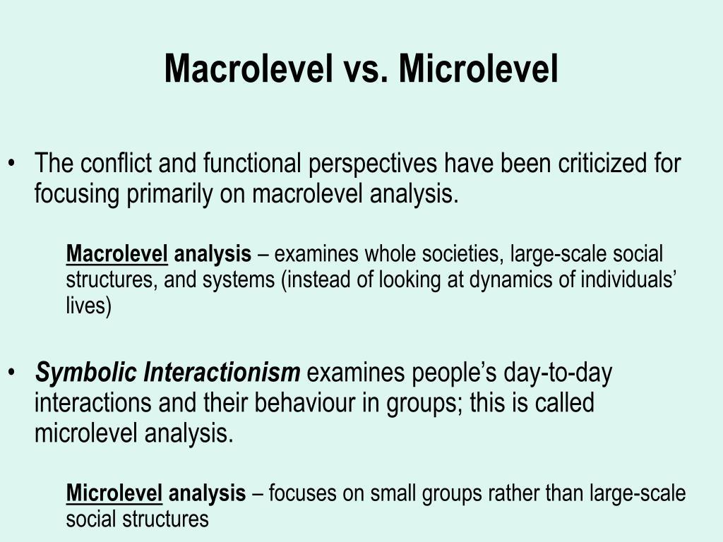 macrolevel vs microlevel l.