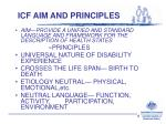 icf aim and principles