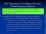 the experience of calling at the zoo underlying assumptions21