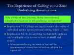the experience of calling at the zoo underlying assumptions23