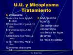 u u y micoplasma tratamiento