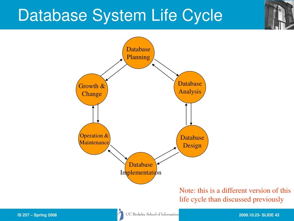 Database System Life Cycle