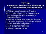 tst sa components added for the adaptation of tst for adolescent substance abuse