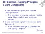 tip exercise guiding principles core components