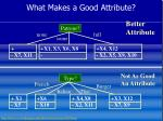 what makes a good attribute