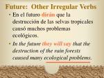 future other irregular verbs24