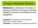 energy in biological systems3