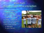 brain fact humans need social interaction