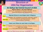 structure of usa sai organization