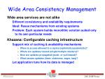 wide area consistency management