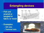 entangling devices