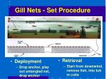 gill nets set procedure